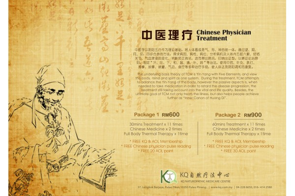Chinese Physician Treatment Package (中医理疗配套) 60min x 11 times